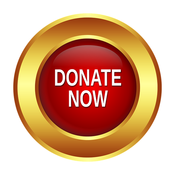 Picture of Donate Now